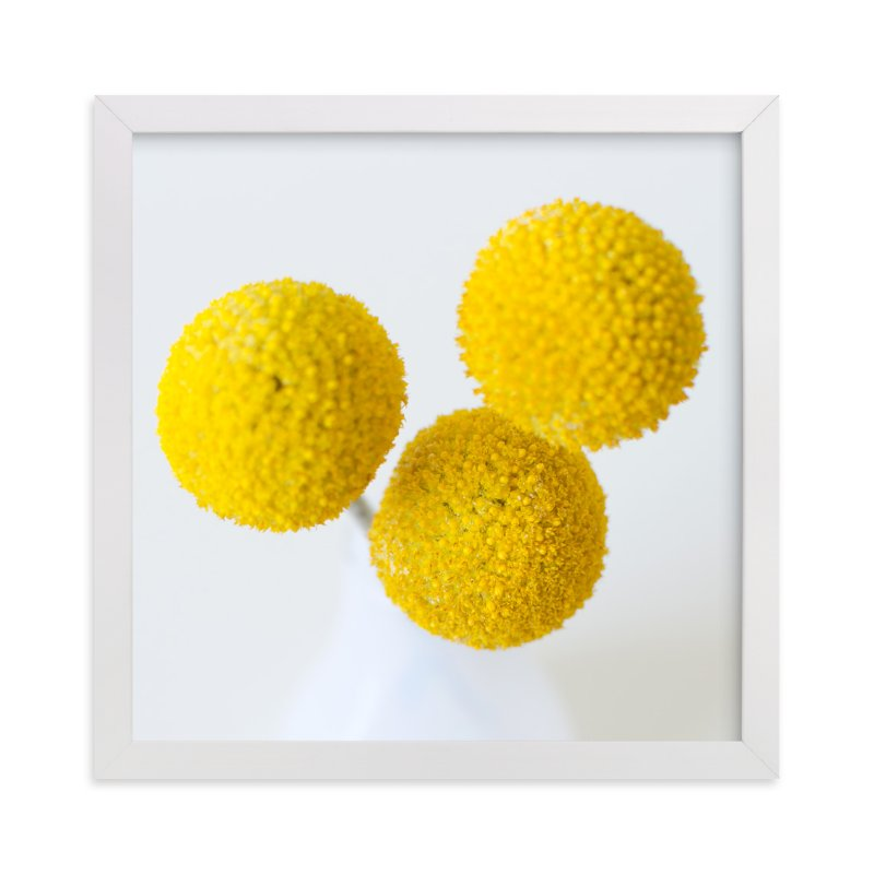 """Billy Buttons"" - Art Print by Christina Flowers in beautiful frame options and a variety of sizes."