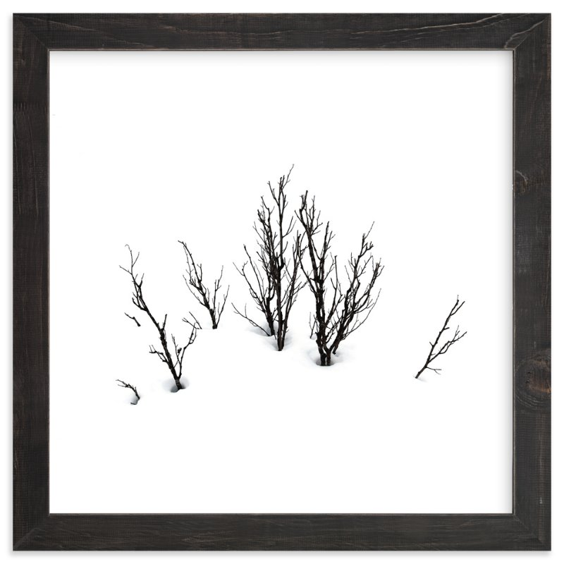 """Deep in snow"" - Art Print by LemonBirch Design in beautiful frame options and a variety of sizes."