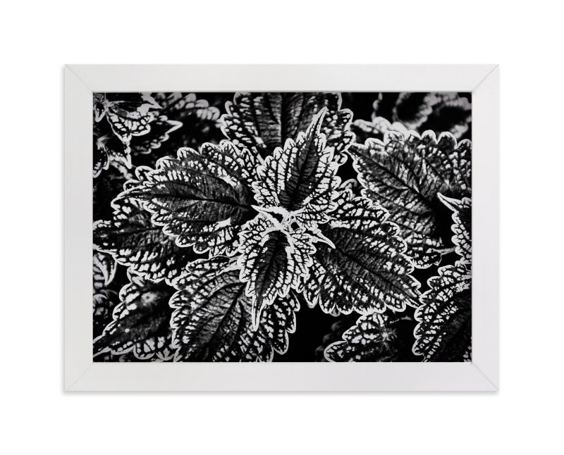 """""""BW Leaves"""" - Art Print by Alexis Arnold in beautiful frame options and a variety of sizes."""