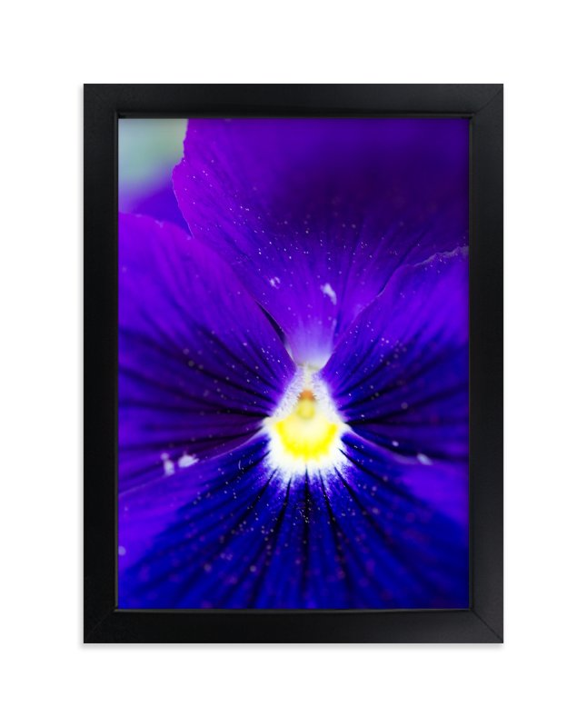 """""""Purple Velvet"""" - Art Print by Giulia Doyle in beautiful frame options and a variety of sizes."""