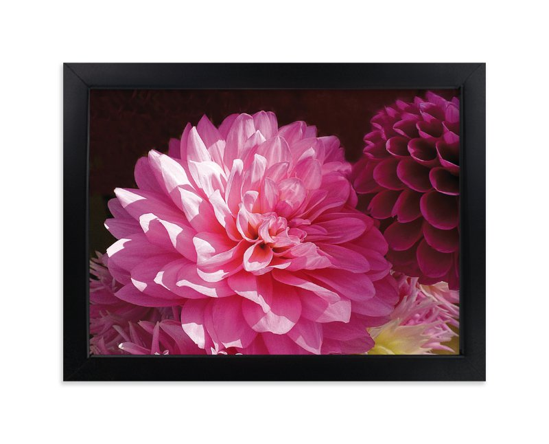"""""""Pink Dahlia"""" - Art Print by Mazing Designs in beautiful frame options and a variety of sizes."""