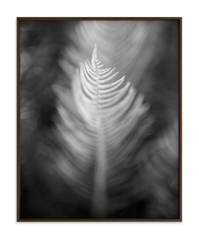 """""""Soft Feathers"""" - Art Print by Lynn Lehto in beautiful frame options and a variety of sizes."""