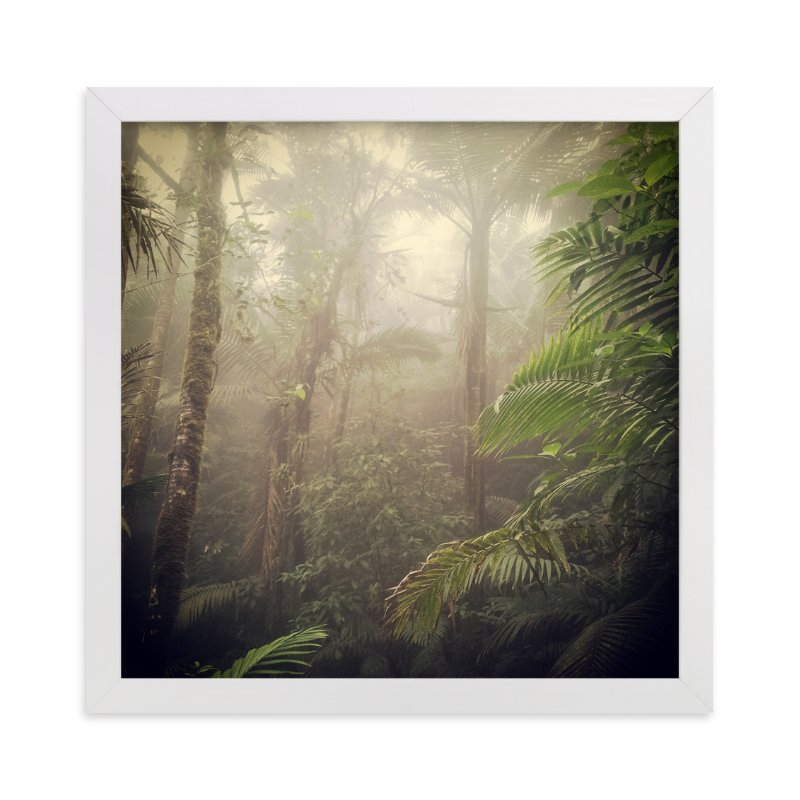 """""""Rainforest extravaganza 1"""" - Art Print by Aimee Siberon in beautiful frame options and a variety of sizes."""