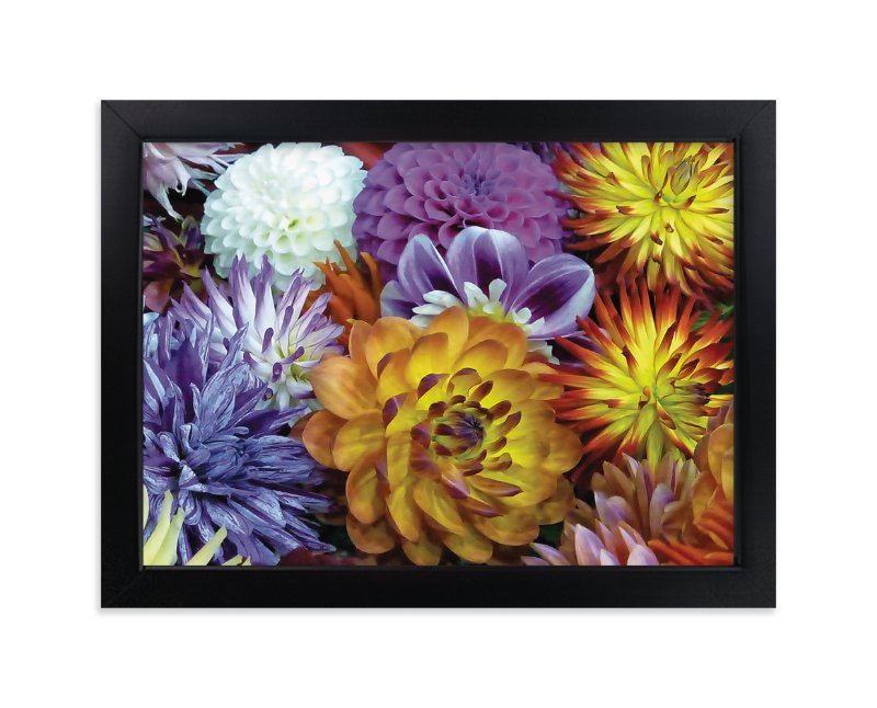 """""""Dahlia Mix"""" - Art Print by Mazing Designs in beautiful frame options and a variety of sizes."""