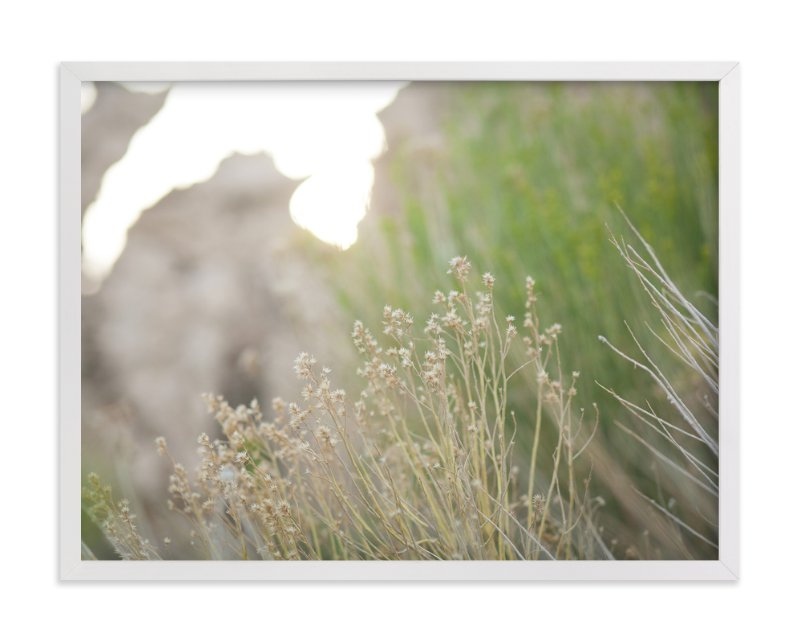 """""""Gilded Grasses"""" - Art Print by Lindsay Ferraris Photography in beautiful frame options and a variety of sizes."""