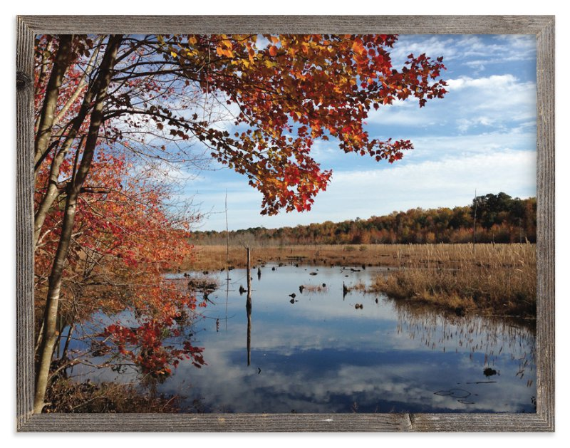 """""""Fall in Virginia"""" - Art Print by Luckybug Designs in beautiful frame options and a variety of sizes."""