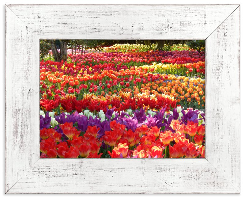 """""""Garden Full of Springtime"""" - Art Print by Jan Kessel in beautiful frame options and a variety of sizes."""