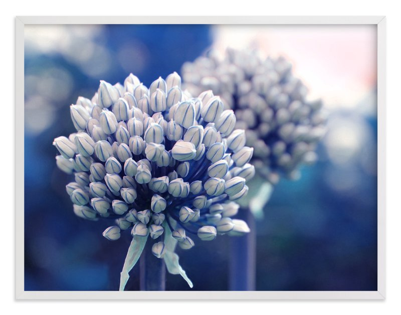 """Allium in Indigo"" - Art Print by Karen Kaul in beautiful frame options and a variety of sizes."
