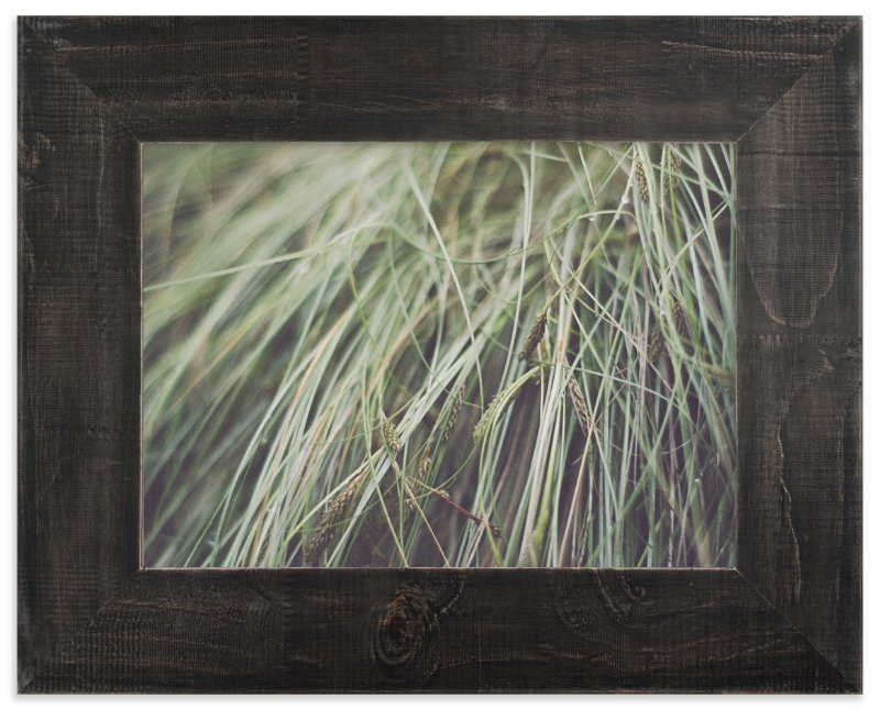 """""""GRASS"""" - Art Print by Stacy Cooke in beautiful frame options and a variety of sizes."""