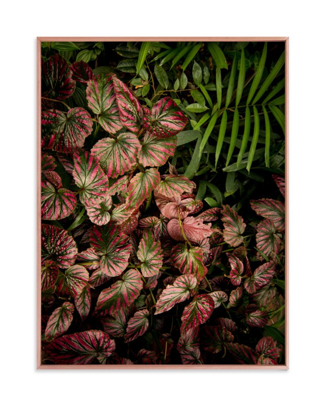 """The Jungle Room - Part 2"" - Art Print by Owl and Toad in beautiful frame options and a variety of sizes."