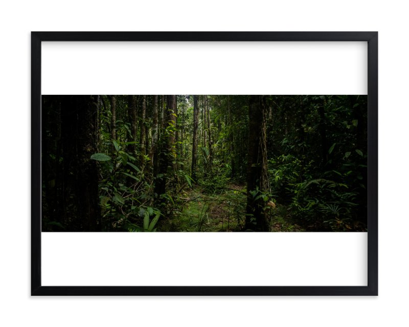 """Amazonian Jungle"" - Art Print by Arash Fattahi Acosta in beautiful frame options and a variety of sizes."