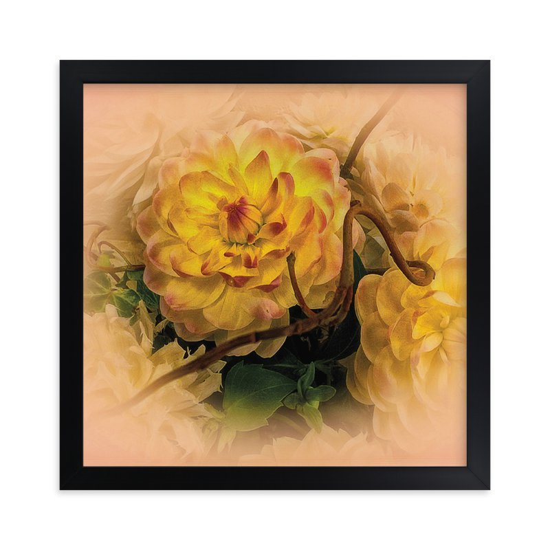 """""""Yellow Waterlily Dahlia"""" - Art Print by Mazing Designs in beautiful frame options and a variety of sizes."""