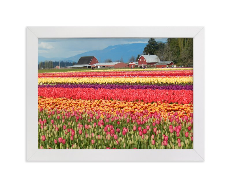 """""""Classic Tulip Town"""" - Art Print by Jan Kessel in beautiful frame options and a variety of sizes."""