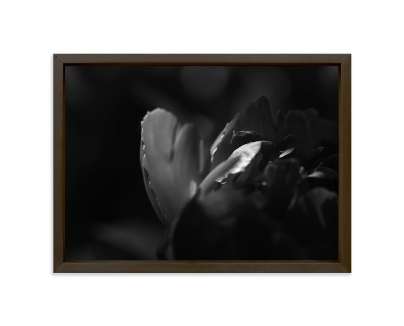 """""""Peony #2"""" - Art Print by Lynn Lehto in beautiful frame options and a variety of sizes."""