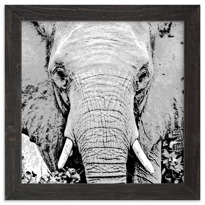 mr ELEPHANT Wall Art Prints by Gail Schechter   Minted