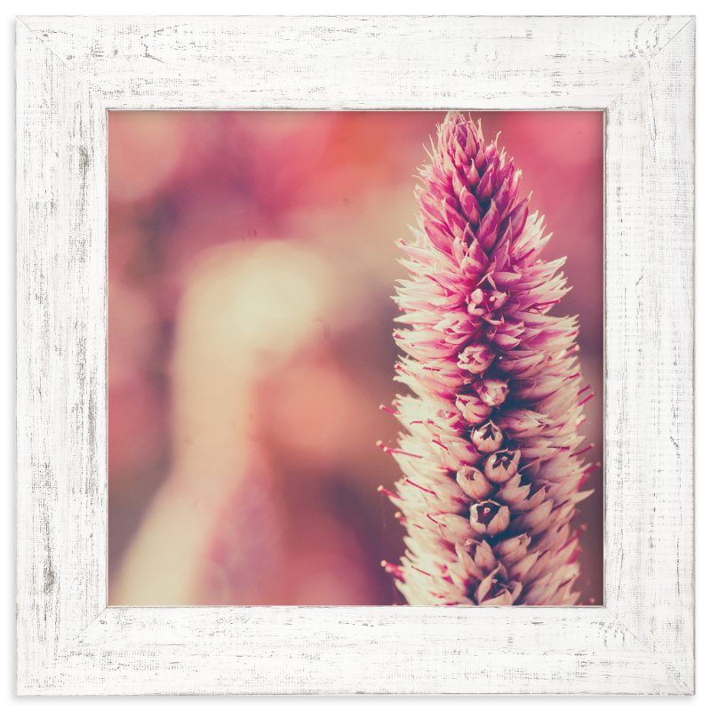 """Fuchsia Study 1"" - Art Print by Smile Peace Love in beautiful frame options and a variety of sizes."