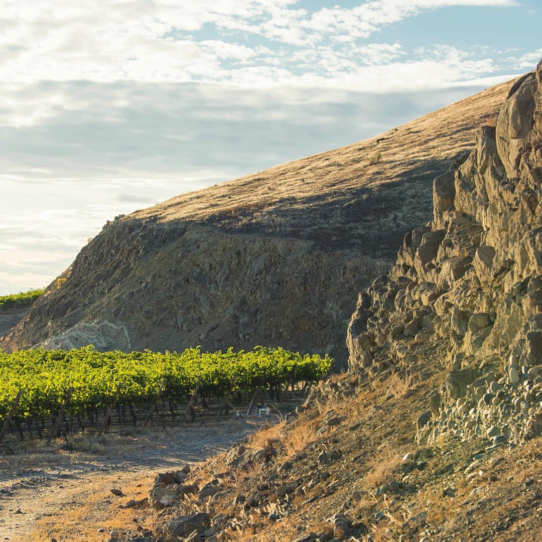 Sunnyside Wa Weather >> Sunnyside Wa Wine Country Craft Beer Farms And Produce