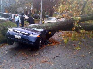 Staten Island car