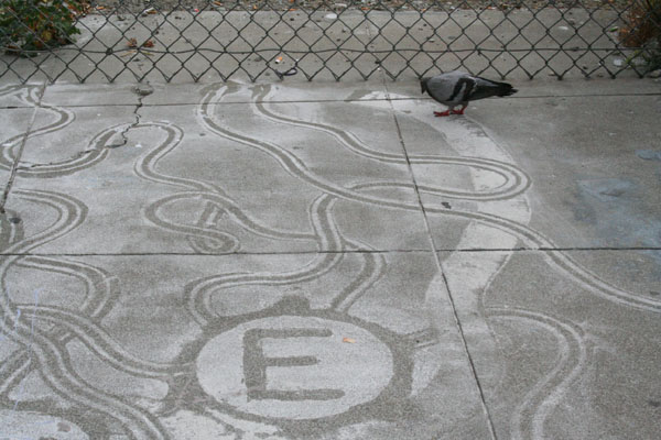 "Pigeons eat away at Armstrong's three-day old ""welcome mat."""