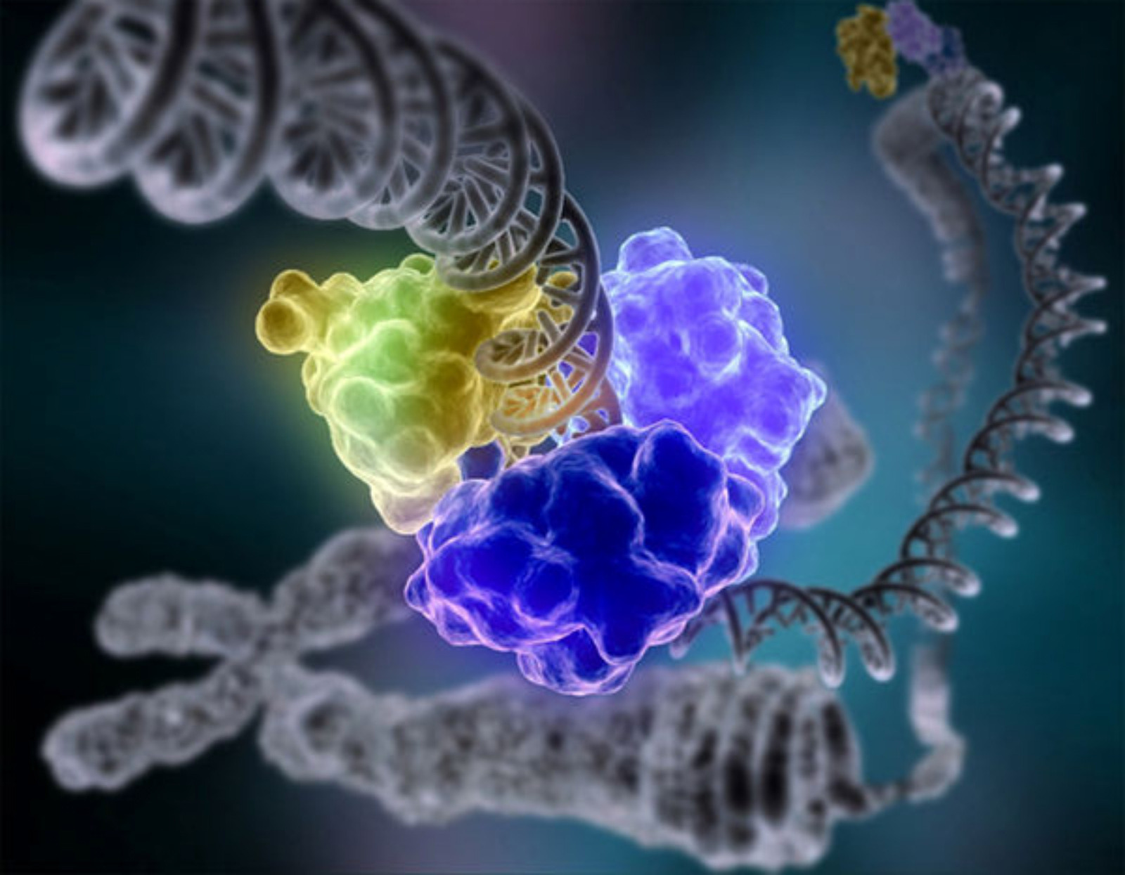 DNA Profiling: You May Be Next