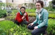 Brooke Budner and Caitlyn Galloway farm lettuce on some of the most expensive real estate in the country.
