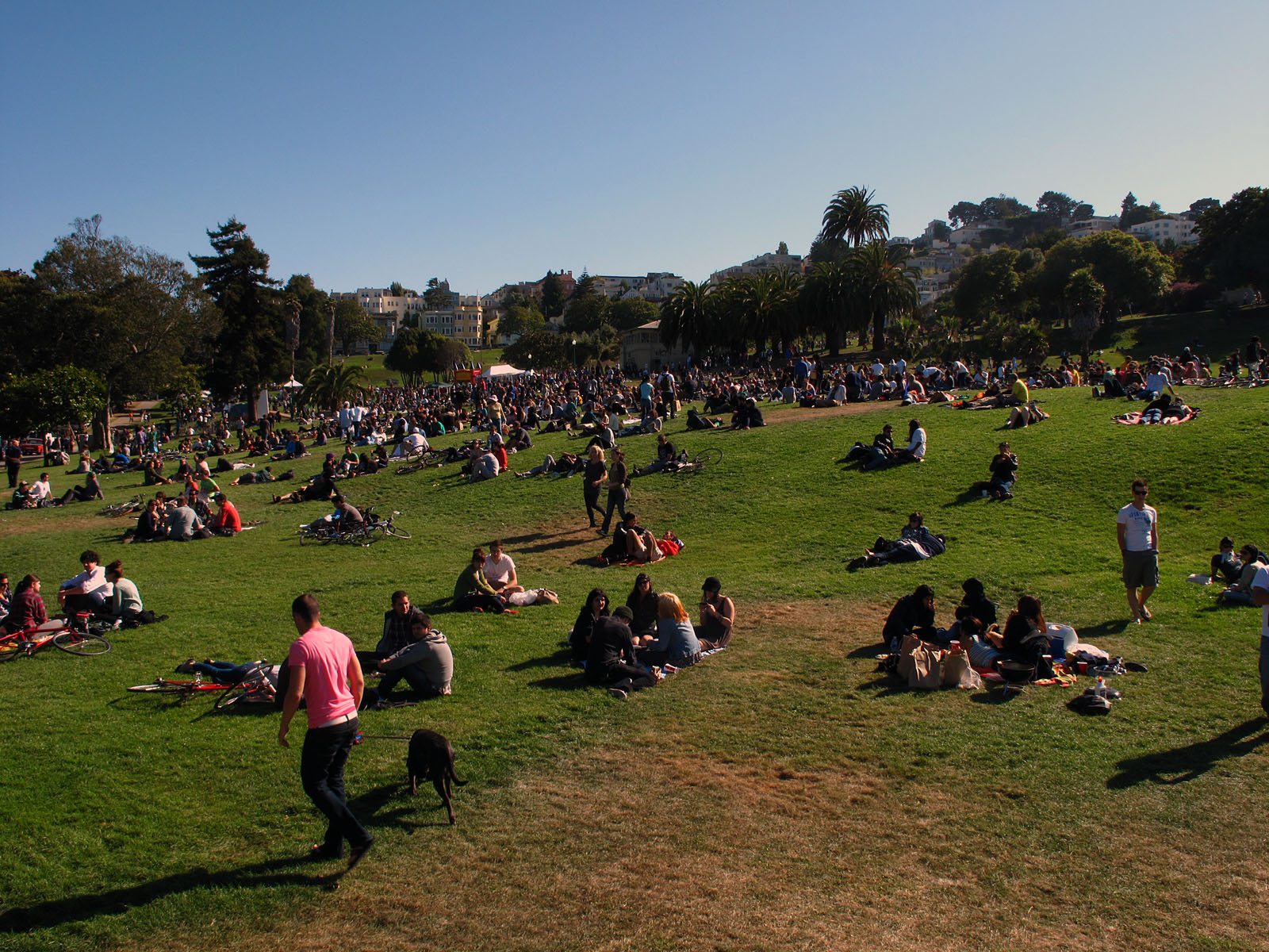 Despite Protests, Dolores Park Vendors Move Forward