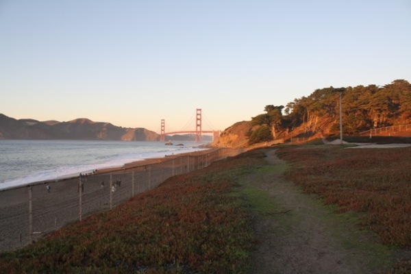 Catch the D line, Muni's longest route at Stonestown Galleria for a ride with views of Lake Merced past the zoo, up Sunset Blvd and through Golden Gate Park, to get to Baker Beach with a view of the Golden Gate Bridge from below