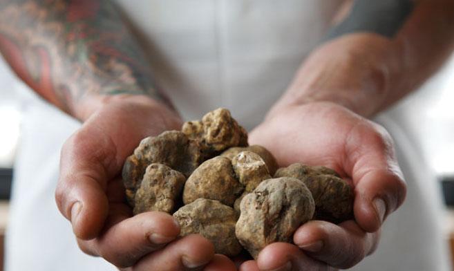 White Truffles at Farina
