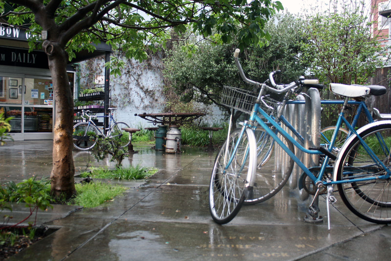 Farewell, Bike Discount at Rainbow Grocery….