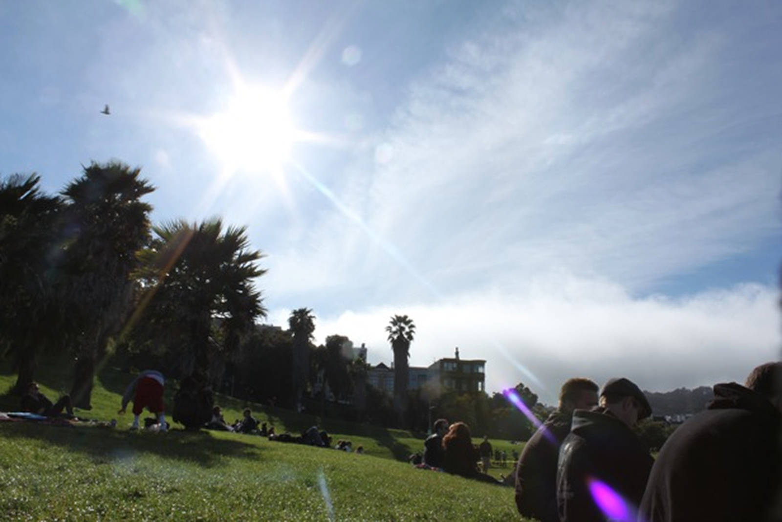 24 Hours in Dolores Park