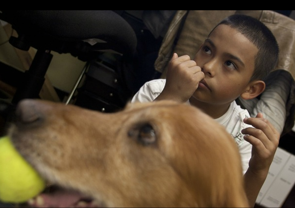 PHOTO ESSAY: Jake the Therapy Dog Helps Young Readers at Bryant Elementary School
