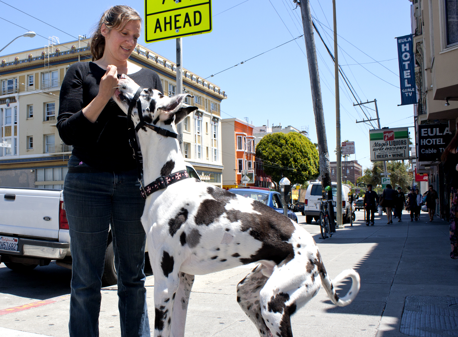 Seriously Big Dog on 16th and Valencia