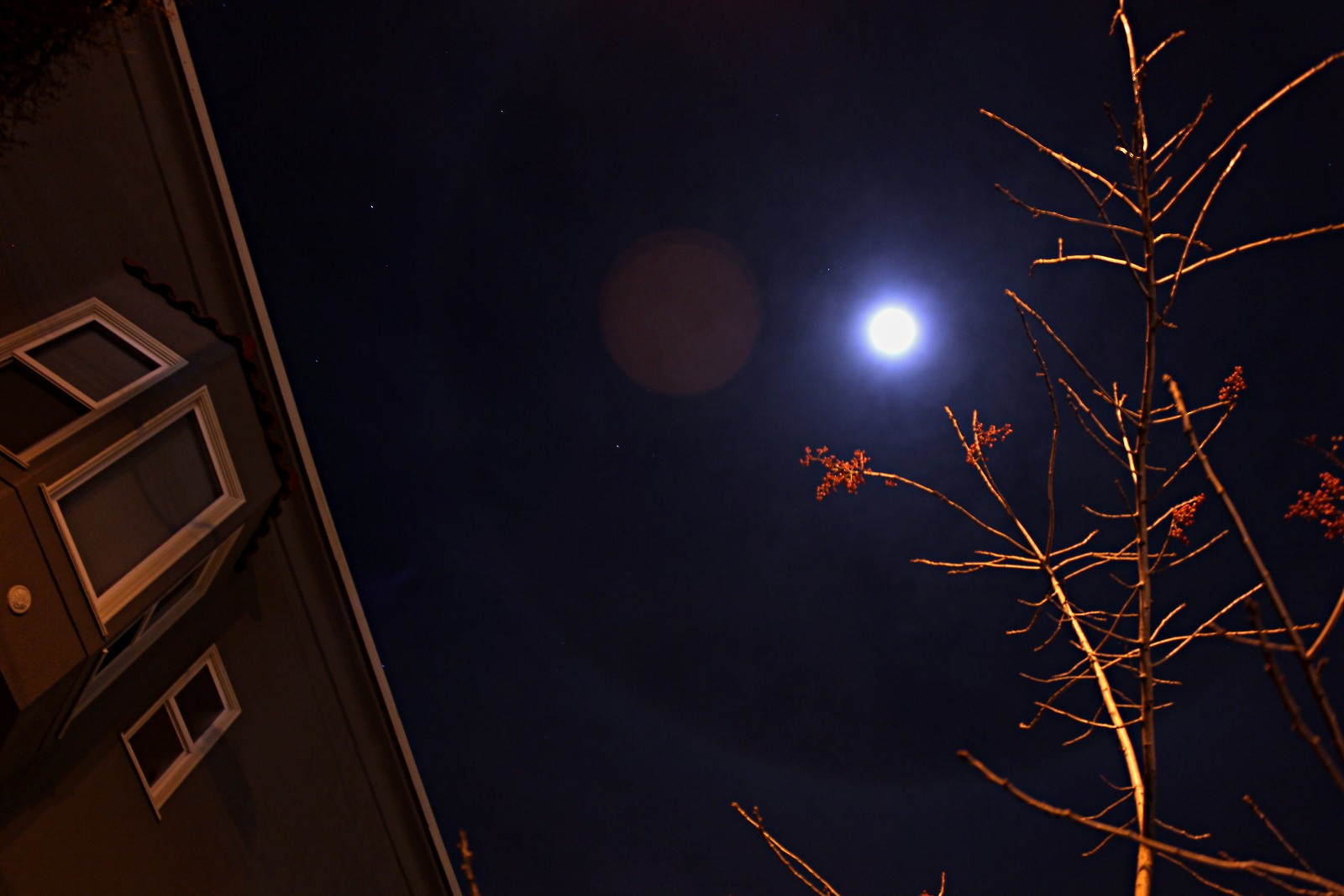SNAPS__ moon halo