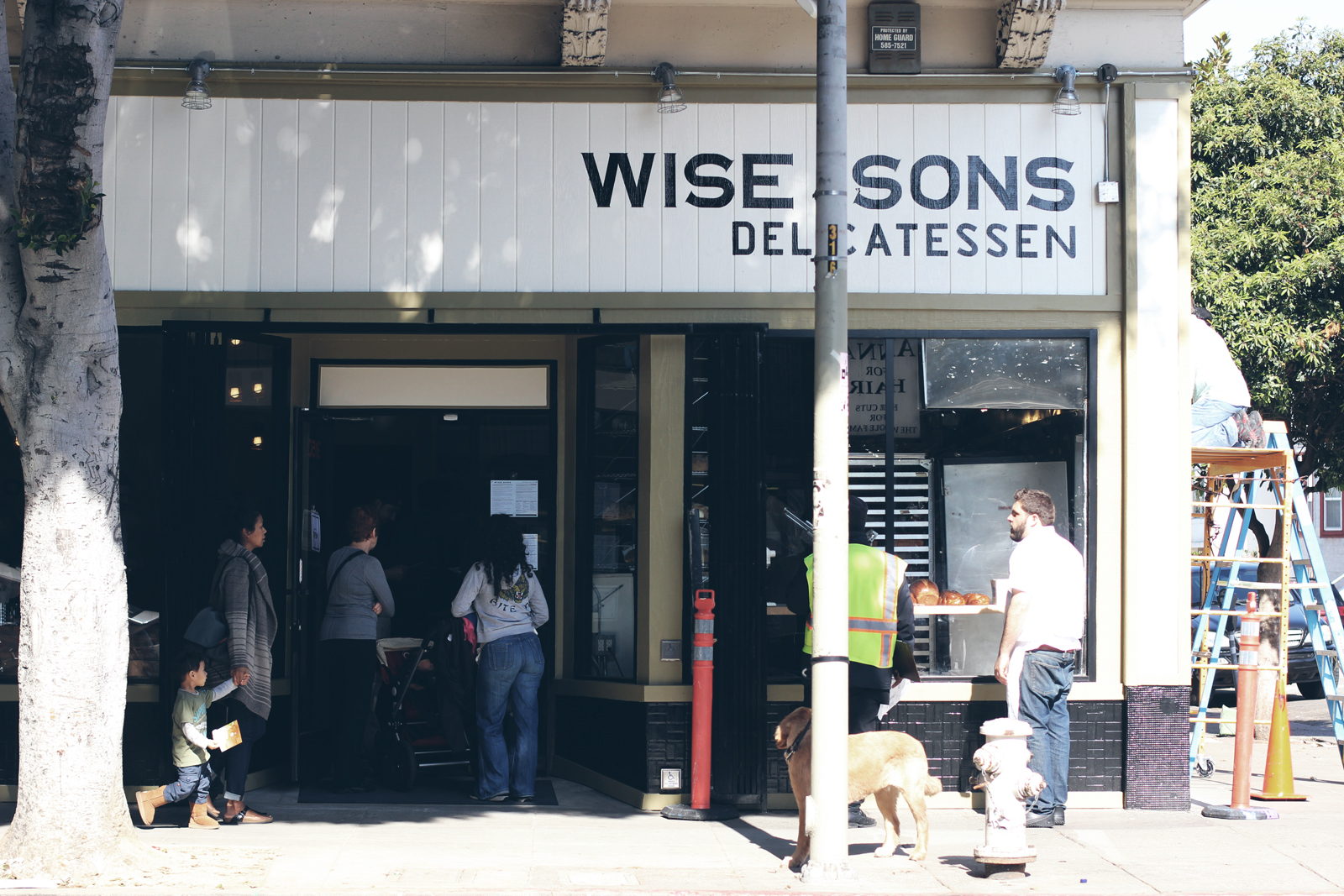 Wise Sons Opens at Last