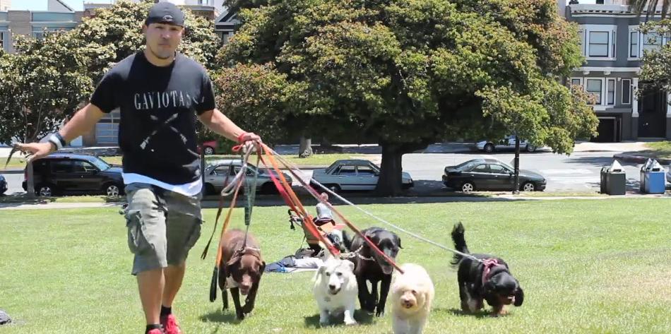 My Mission: Rafa Corral, Dog Walker