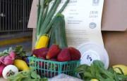 chefmarketbox-mcm