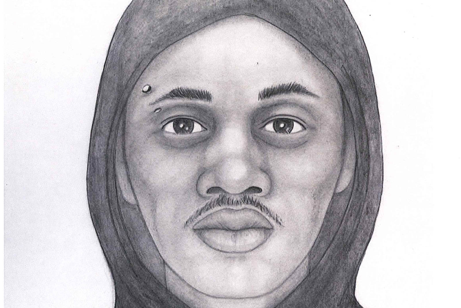 Sketch of Erie St. Sexual Assault Suspect Released