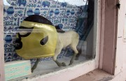 This luchador horse was just waiting to be snapped on Valencia St.