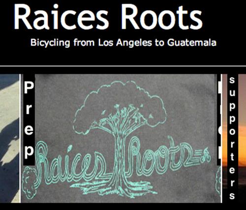 raices-roots
