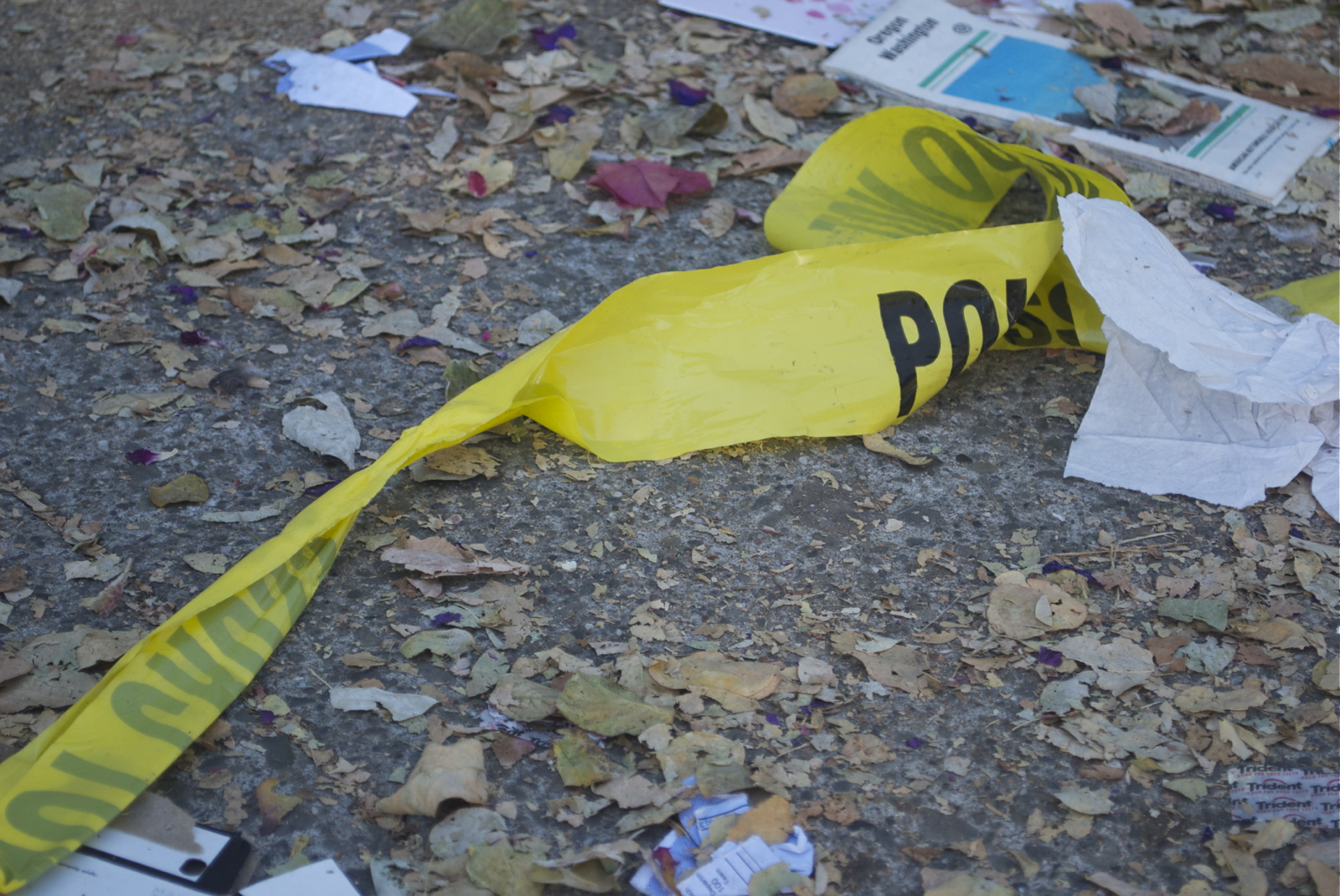 Police Arrest Man in Treat Ave. Murder, Seek Second Suspect