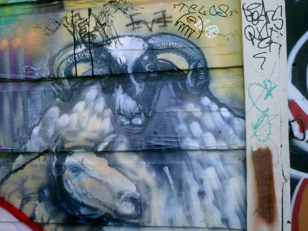 Taken on Clarion Alley for Mission Local's
