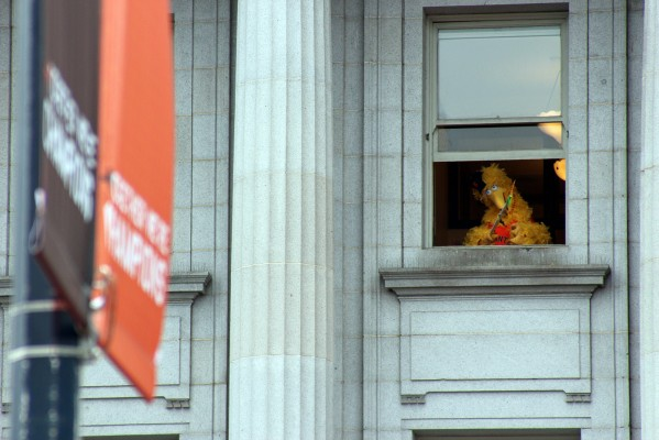 Big Bird watches from a window. Photo by Rigoberto Hernandez.