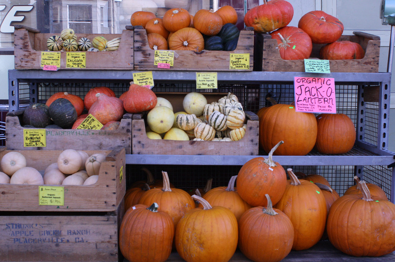 Pumpkins for sale on 18th Street.