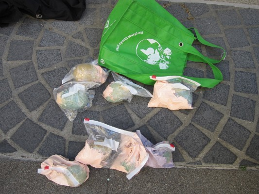 Paint grenades, some with rocks, thrown by protestors. Photo courtesy of SFPD.