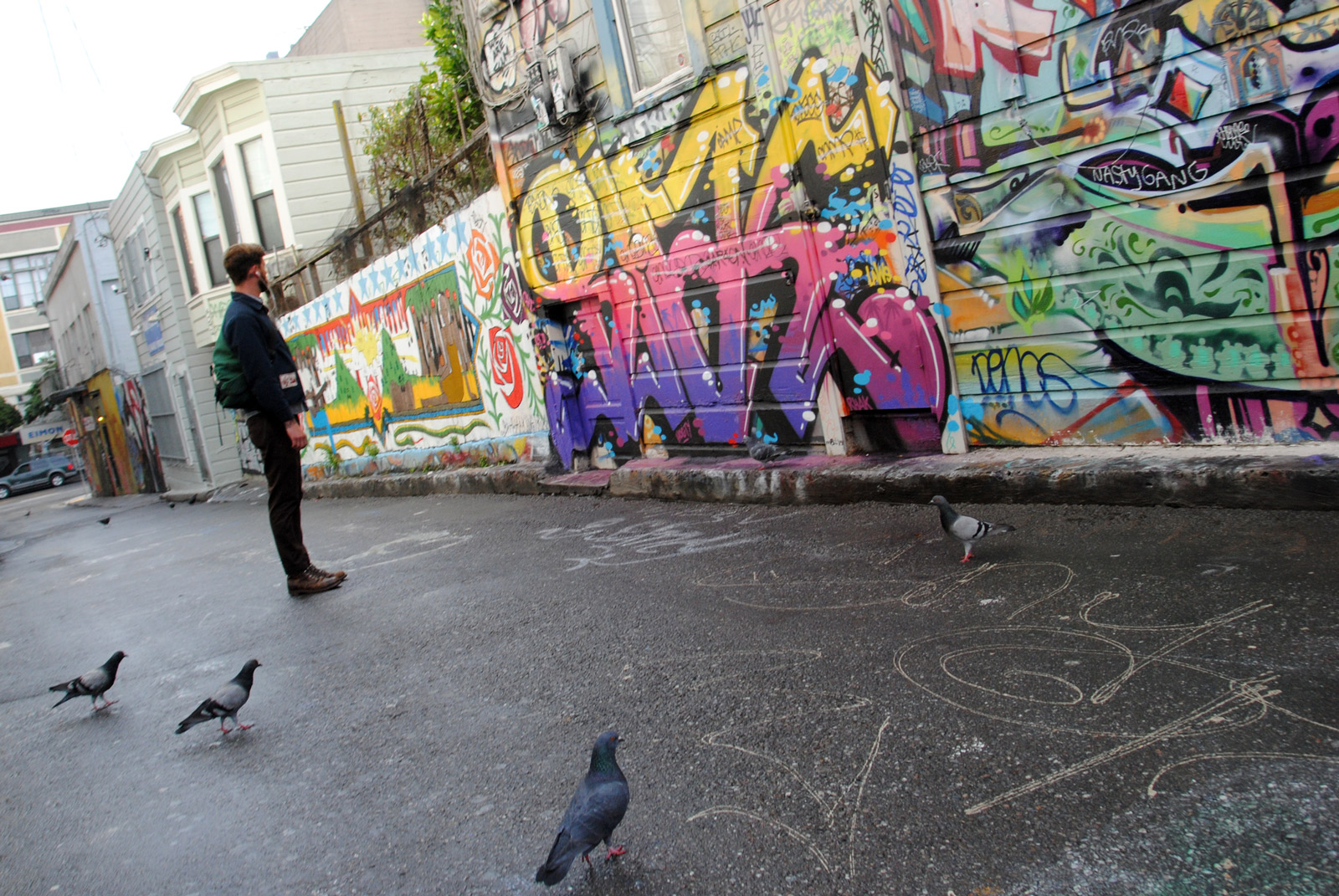 SNAP: Even Pigeons Like Murals