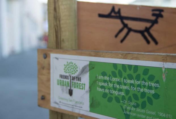 I speak for the trees. Photo by Mateo Hoke