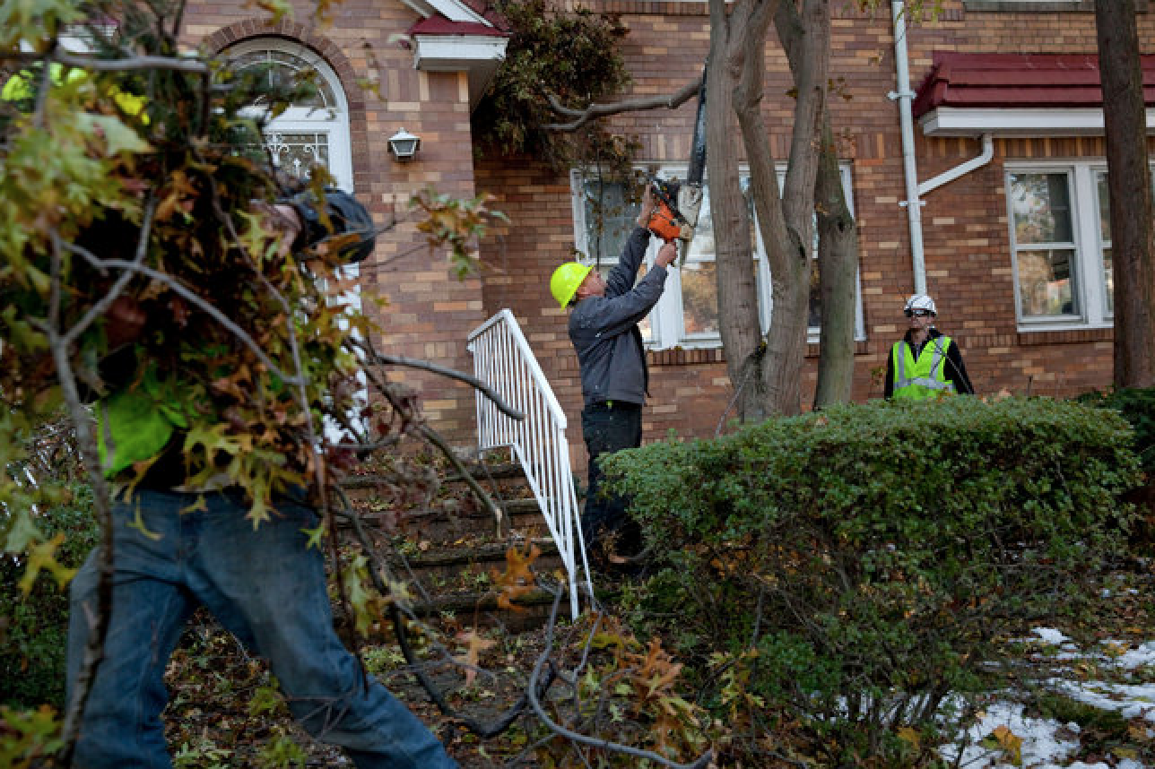 A crew from Gainesville, Fla., removed fallen trees from a property in Jamaica Estates, Queens. Photo by Marcus Yam for the New York Times