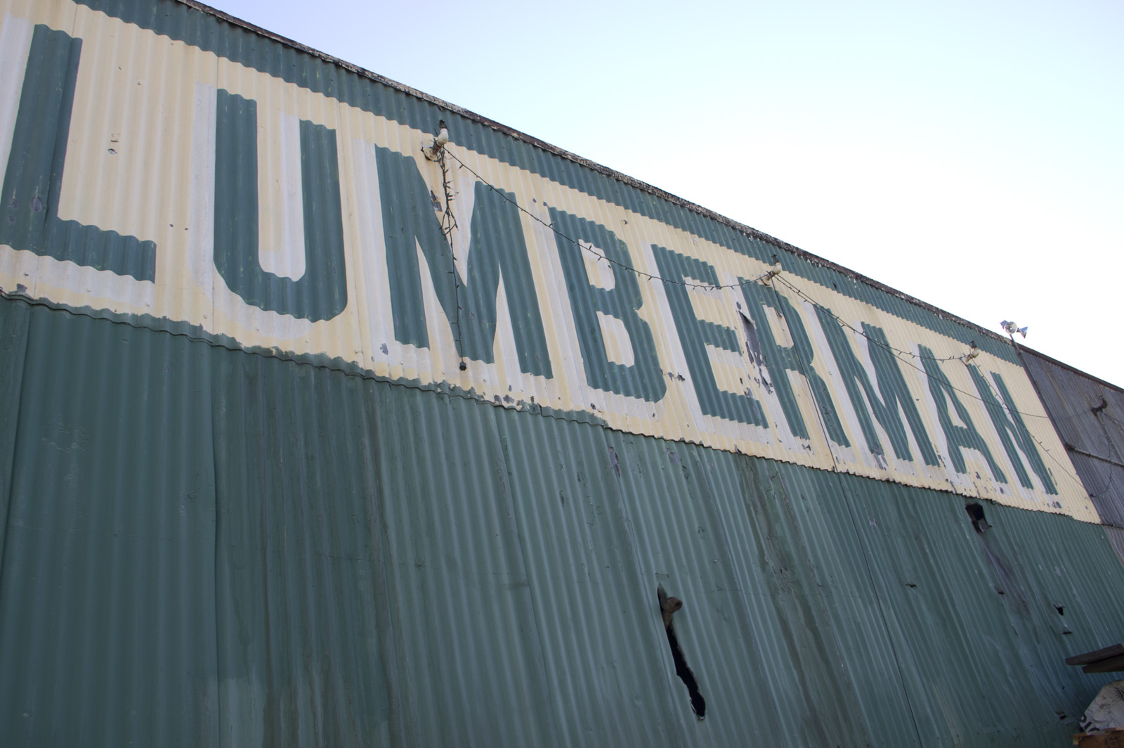 The Lumberman sign looms large over the Mission. Photo by Mateo Hoke