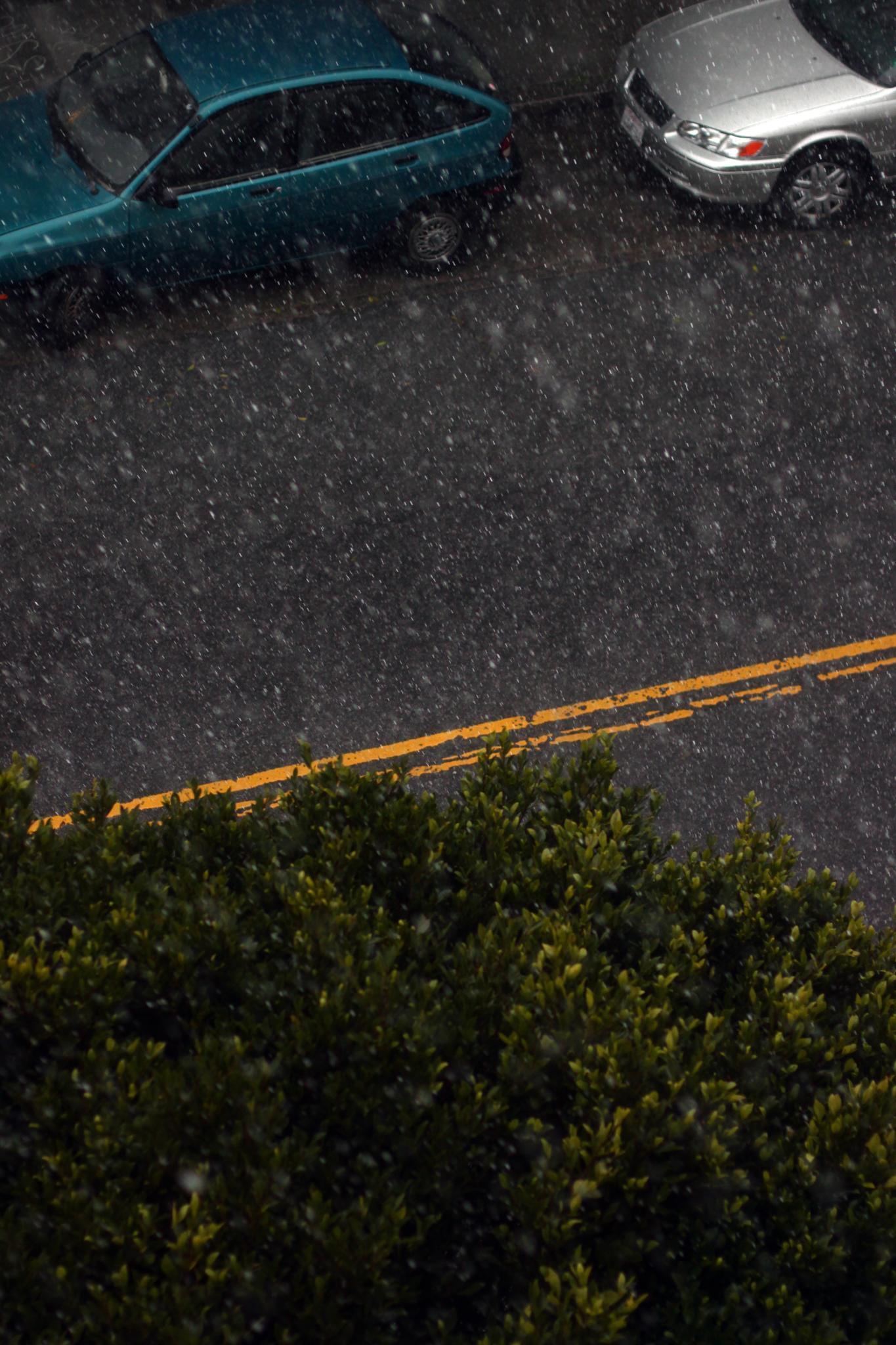 SNAP: San Francisco Rain