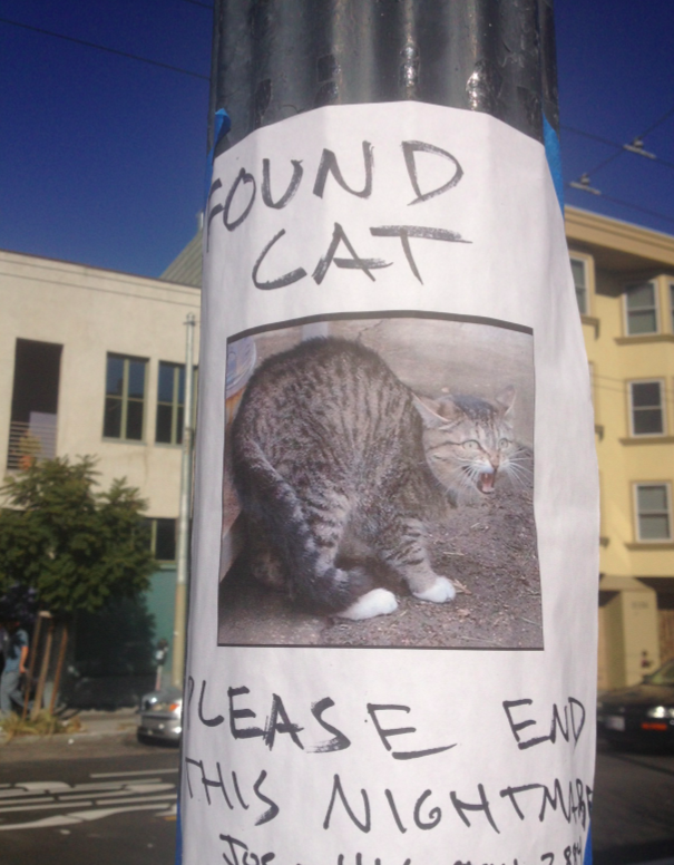 Cat found poster as seen on 17th and Capp streets.